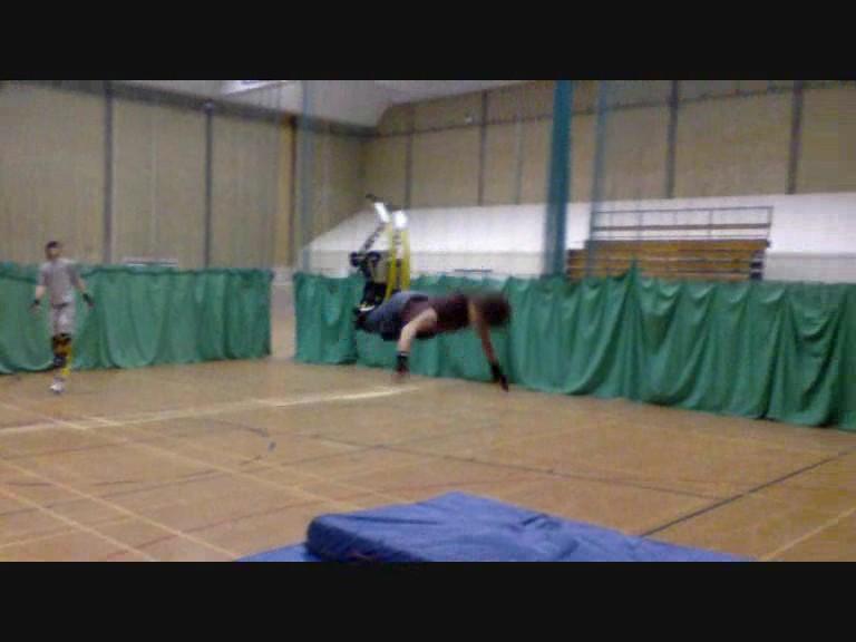 Black Lion gym